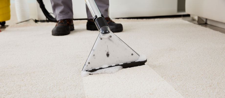 How Often Should My Carpet Be Cleaned Ajax Service
